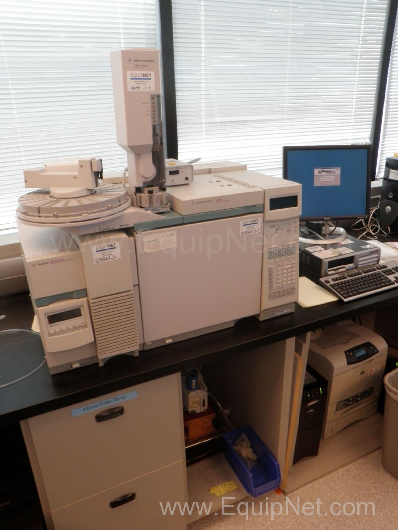 Agilent 6890N Gas Chromatograph with 5973N Mass Selective Detector