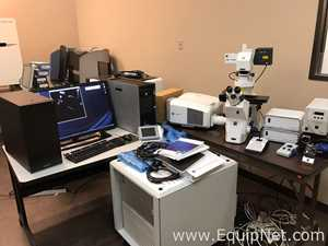 Zeiss LSM 710 inverted Microscope