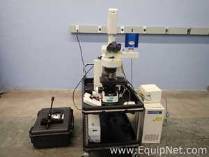 Nikon Corp 80i Eclipse Fluorescence Microscope Sys w/D-Eclipse C1 Laser and CoolSnap Camera and Kit