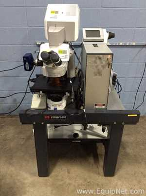 Zeiss Inc LSM700 Microscope On Kinetic Systems Vibraplane Table