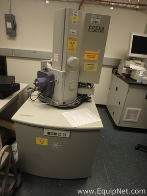 Microscopio Philips ESEM XL30ESEM FEG