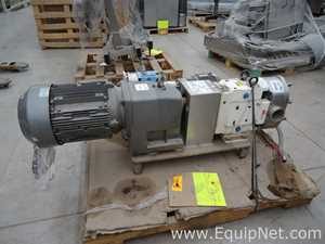 Wright Flow Technologies WB1300 TRA20 Stainless Steel Positive Displacement Pump