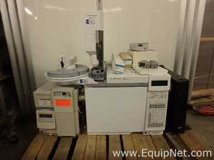 Agilent Technologies 6890N  Gas Chromatograph with 5973N Mass Selective Detector
